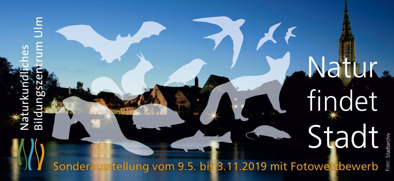 """Sonderausstellung """"Natur findet Stadt"""""""